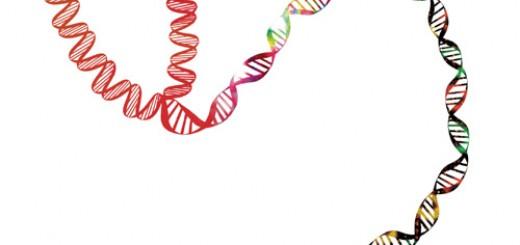 genetics nursing
