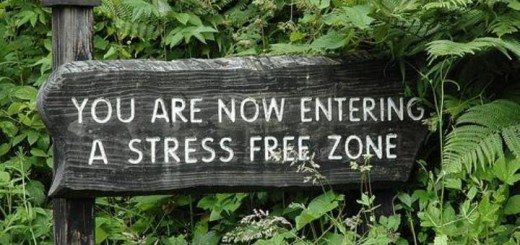 entering-stress-free-zone1