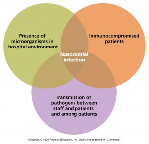 nosocomial infection, The Nurse's Role