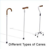canes Assistive Devices for Walking
