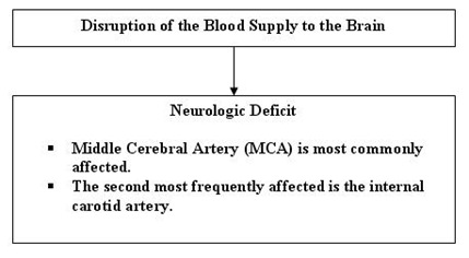 cva pathophisiology thumb Pathophysiology of  Cerebrovascular Accident (CVA)