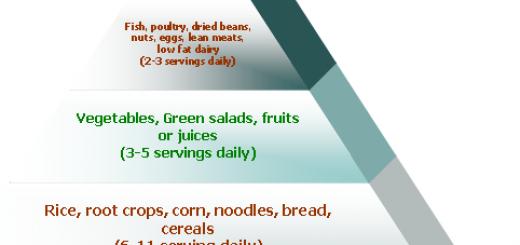 foodguidepyramid.png