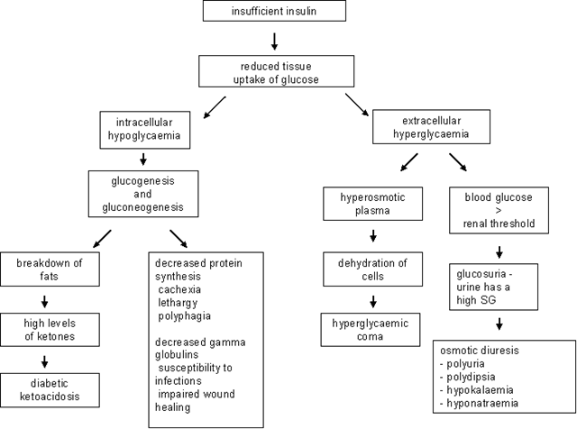 pathophysiology of upper gastrointestinal bleeding